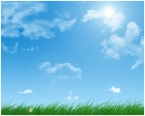 summer_times_by_pycc_wallpaper